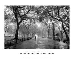 Poet's Walk, New York City