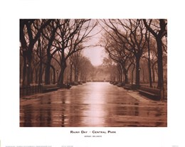 Rainy Day - Central Park